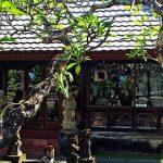 ۱۰ مکان دیدنی بالی