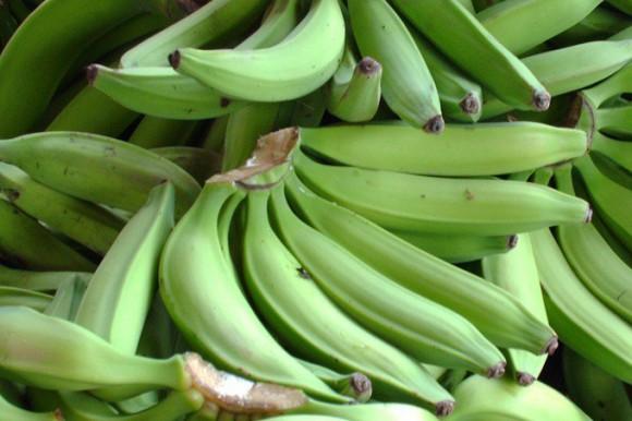 رژیم غذایی مردم دومنیکا
